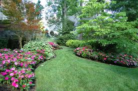 22-How To Use Annuals In Landscaping Your Garden